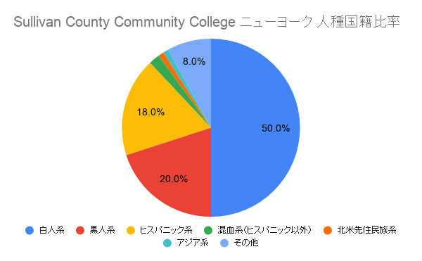 Sullivan County Community College ニューヨーク国籍比率