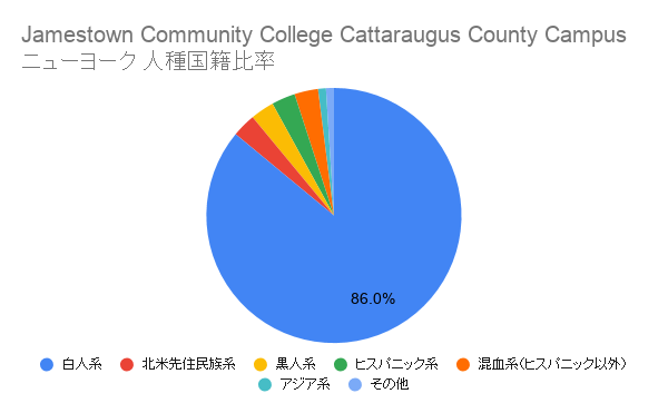 Jamestown Community College Cattaraugus County Campus ニューヨーク国籍比率