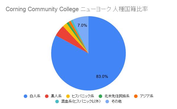 Corning Community College ニューヨーク国籍比率