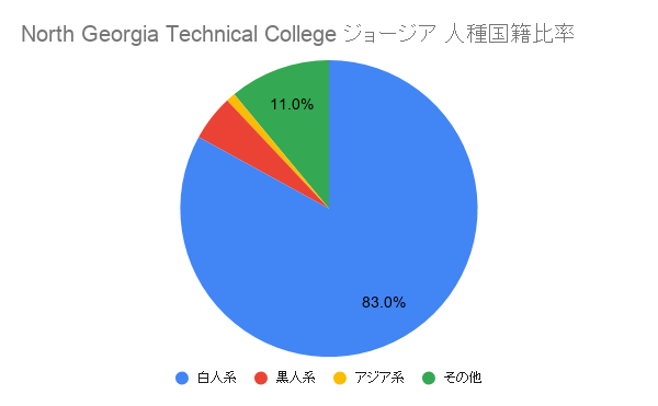 North Georgia Technical College ジョージア国籍比率