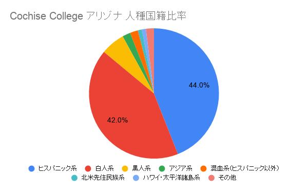Cochise College アリゾナ国籍比率